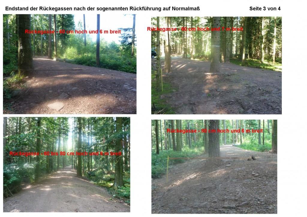 2012-09-05 Beispielbilder der Rückegassen im Verlauf der Maßnahme_Seite_3