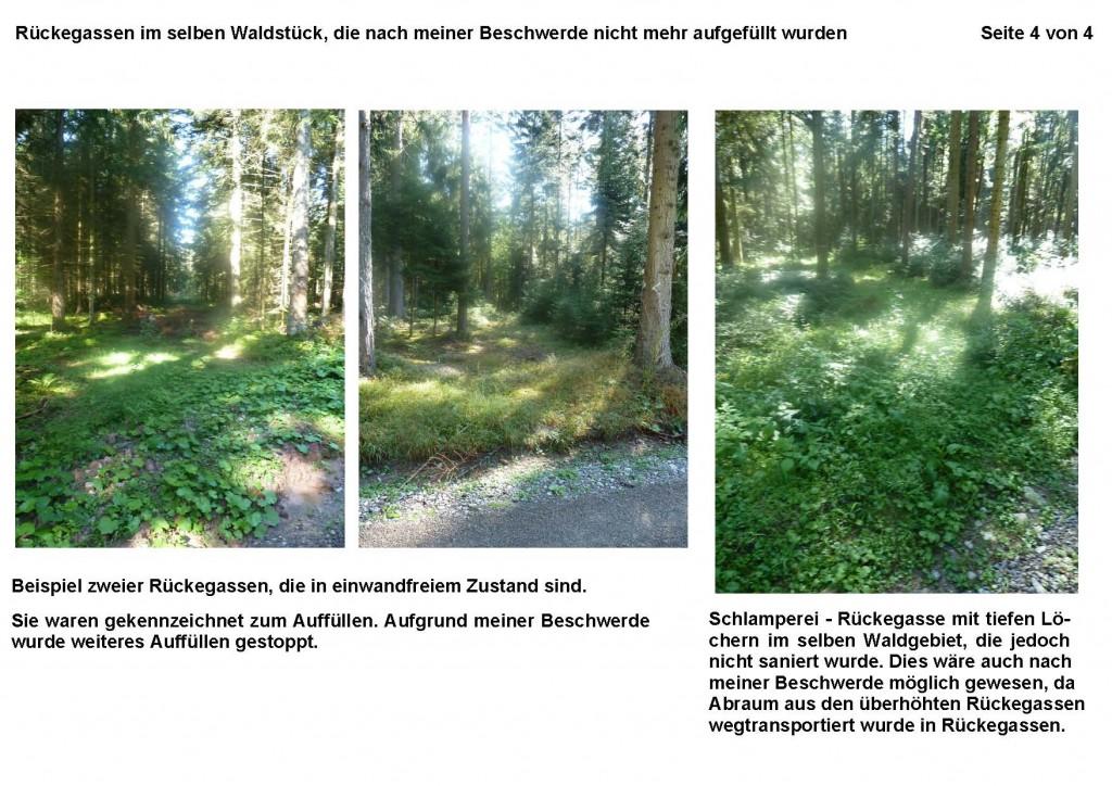2012-09-05 Beispielbilder der Rückegassen im Verlauf der Maßnahme_Seite_4