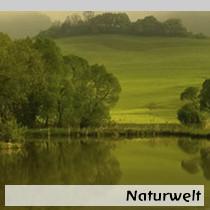Naturwelt1