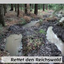 Rettet-den-Reichswald1