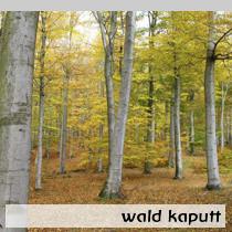 wald-kaputt